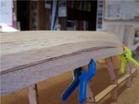 Name: Lym 29.jpg Views: 805 Size: 43.7 KB Description: This angle shows a serious misalignment of planks #8 & #9