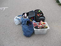 Name: IMG_5551.jpg