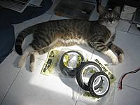 Name: IMG_9130.jpg