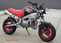 Name: MonkeyLove4.jpg