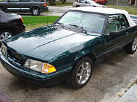 Name: mustang 010.jpg