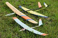 Name: DSC_0013_DxO.jpg Views: 40 Size: 1.28 MB Description: I flew them all today
