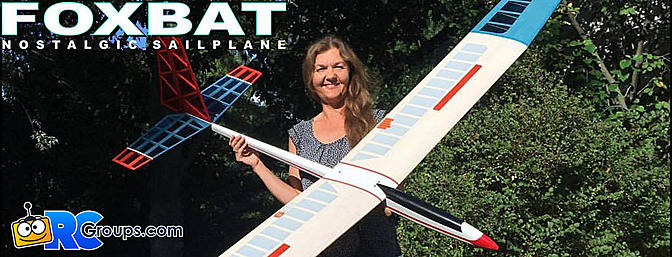 Peter Goldsmith Designs Foxbat Sailplane Kit