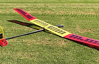 Beautiful Pulsar 2E Ultra Lite Electric Sailplane