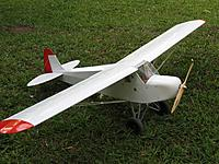 Name: New Cub.JPG