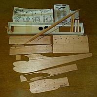 Name: Cardinal 02.jpg