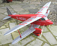 Name: Dragonfly 057.jpg