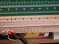Name: PICT1271.jpg