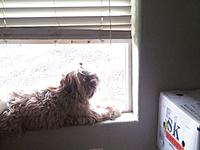 Name: 0331021735.jpg