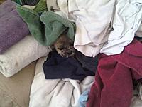 Name: 0407021809.jpg