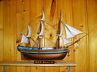 Name: Picture295.jpg