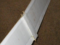 Name: P1010077.jpg