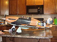 Name: DSC03521.jpg