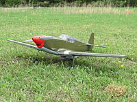 Name: platinum p-51 002.jpg