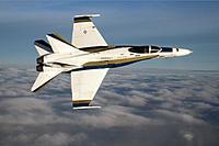 Name: White Hornet 012_cropped.jpg Views: 30 Size: 180.2 KB Description: