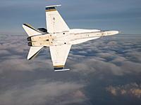 Name: White Hornet 013.jpg Views: 33 Size: 120.6 KB Description:
