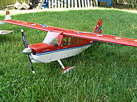 Name: P1010262.jpg