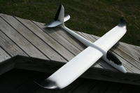 Name: Pteradactyl 025.jpg Views: 158 Size: 73.5 KB Description: Easy Glider