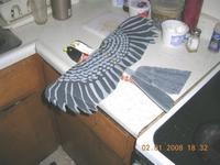 Name: hawk paint counter.jpg Views: 55 Size: 87.8 KB Description: