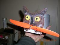 Name: EPP owl 006.jpg Views: 64 Size: 93.6 KB Description: