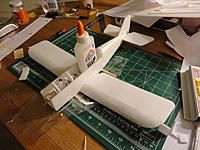 Name: DSC00157.jpg