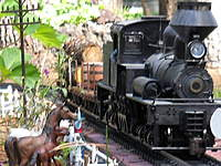 Name: RSCN0989.jpg