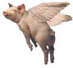 Name: flying_pig.jpg Views: 371 Size: 5.1 KB Description: