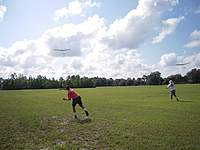 Name: 2 Fly.jpg