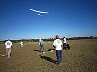 Name: 2012TangerineUNLSun 009.jpg