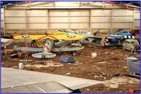Name: lsfm_02.jpg