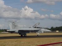 Name: Hornet.jpg Views: 255 Size: 54.3 KB Description: F-18