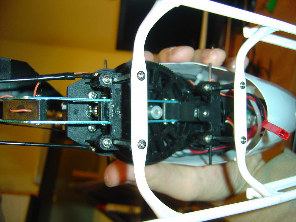 Name: BLBL4.jpg