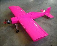 Name: pink_hots.jpg Views: 34 Size: 34.5 KB Description: