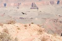 Name: Dsc_0374_reduced.jpg