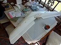 Name: P1000598.JPG.jpg