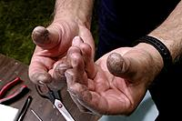 Name: Fingers with glue.jpg Views: 785 Size: 186.4 KB Description: