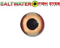 Name: glass eye.jpg Views: 76 Size: 39.0 KB Description:
