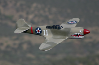 Name: Copy of ZP-40.png