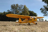 Name: piper j-3 e flite  25 electric.jpg