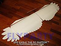 Name: epp_eagle_02.jpg