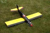 Name: firefly4.jpg Views: 600 Size: 24.6 KB Description: ACE Mini foam wing