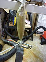 Name: P1000514.jpg