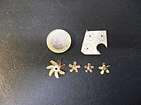 Name: SDC11541.jpg