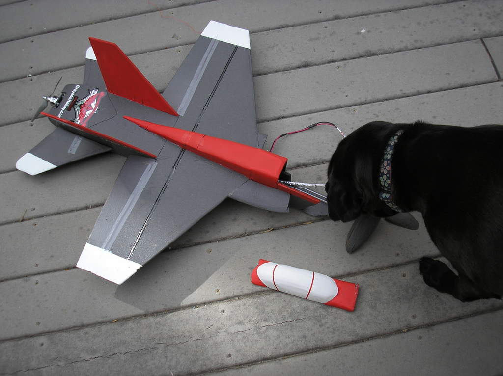 Name: P6021799.jpg