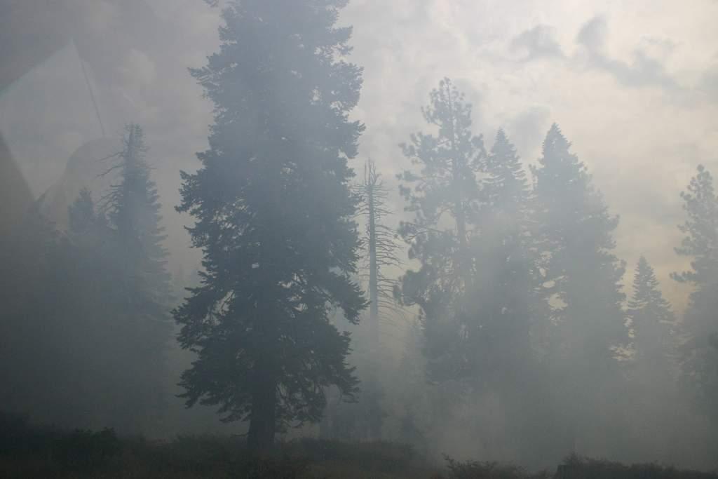 Name: IMG_7370.jpg Views: 198 Size: 30.2 KB Description: Smoke