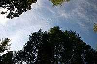 Name: IMG_4265.jpg