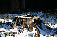 Name: IMG_4314.jpg