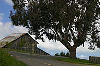 Name: IMG_6487.jpg