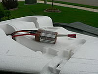 Name: P1030599.jpg