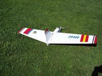 Name: Badius Fly in 09 002 (Medium).jpg Views: 160 Size: 127.5 KB Description: